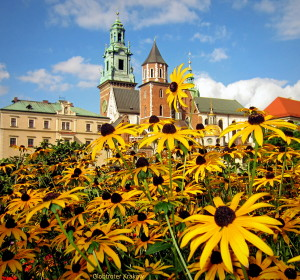 Good morning from Cracow...have a happy Sunday... Dzień dobry z Krakowa... radosnej niedzieli.... Sunny day on the Wawel Hill... Słoneczny dzień na Wawelu...