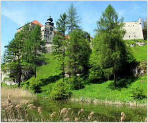 One of the ponds on the background of the Pieskowa Skala Castle... Jeden ze stawów na tle zamku w Pieskowej Skale